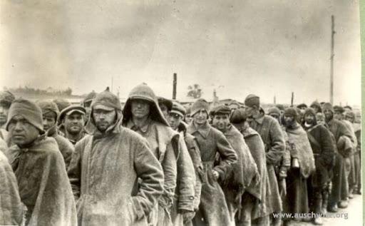 Музей Аушвіц-Біркенау запрошує на освітню сесію «80-ті роковини депортації радянських військовополонених до Аушвіцу»